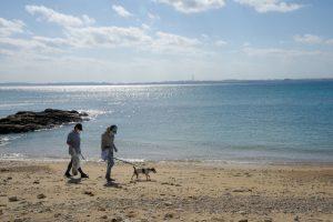 沖縄 ビーチクリーン